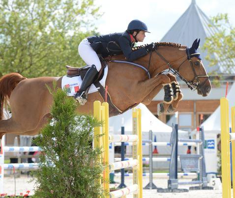 concours saut cheval